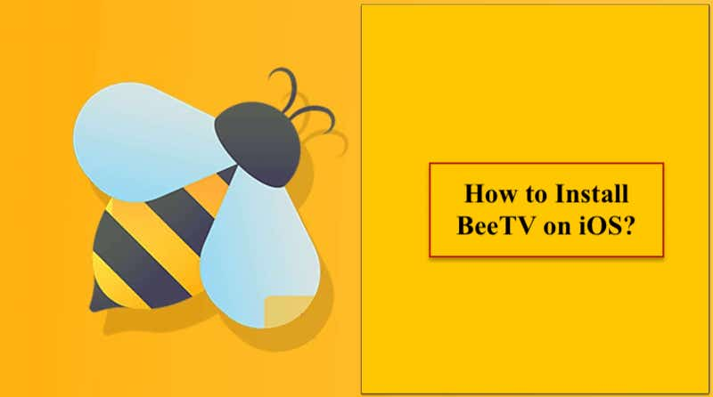 How to Install BeeTV on iOS?